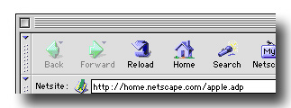 netscape navigator browser bar.