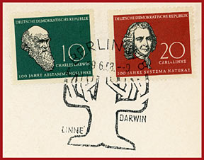 Charles Darwin, Carl von Linne and the Tree of Evolution.